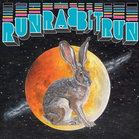 Sufjan Stevens - Run Rabbit Run
