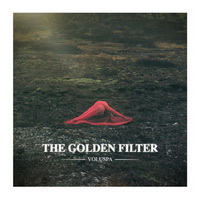 The Golden Filter - Solid Gold